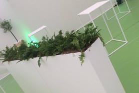Emplacement Jardinière blanche 120x25cm H:100cm + plexi - Pour plantes
