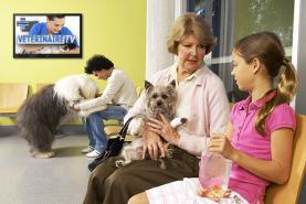 Emplacement Ecran TV d'affichage dynamique pour salle d'attente de VETERINAIRE