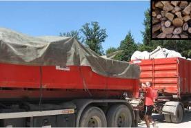 Emplacement Container - Conteneur 8m³, 10m³, 12m³, 15m³, 20m³, 30m³ & 45m³ - Transport de bois