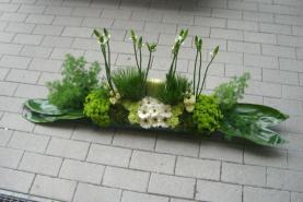 Emplacement Montage de fleurs et plantes - plantes, fleurs, pots, montages, décoration,...