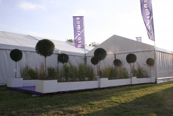 Location Décorations Naturelles - pour événements professionnels